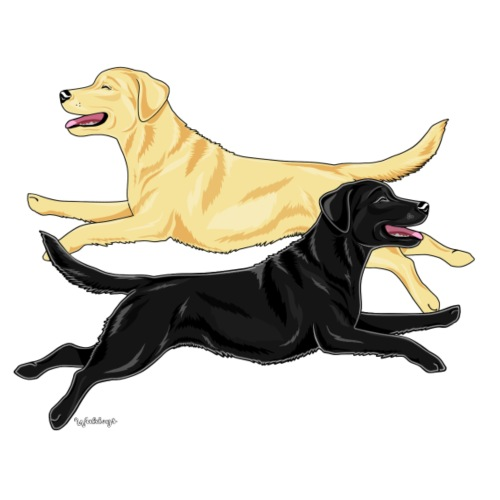 Labrador Pair YB - Miesten premium t-paita