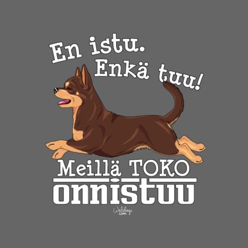 chihutoko4 - Miesten premium t-paita