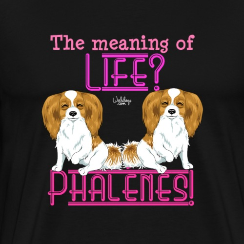 phalenemeaning2 - Men's Premium T-Shirt