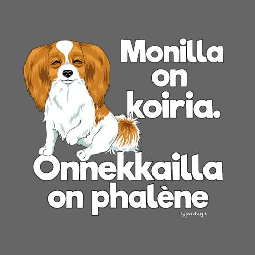 phalenemonilla - Miesten premium t-paita