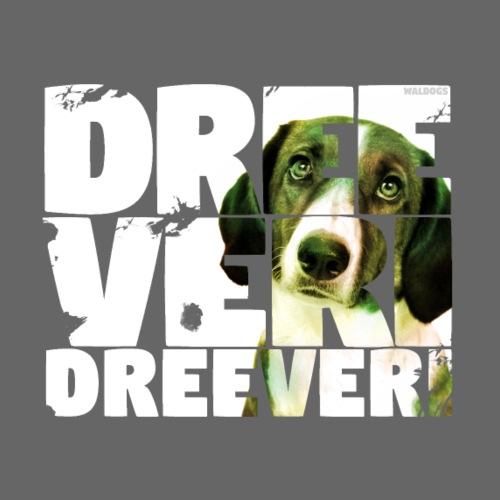 NASSU Dreeveri 05 - Miesten premium t-paita
