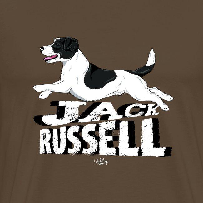jackrussell3