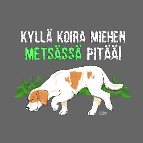 istriametsamies - Miesten premium t-paita