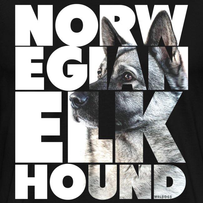 Norwegian Elkhound I
