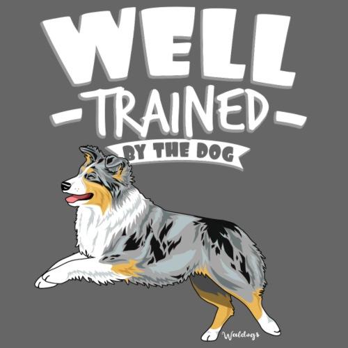 Australian Shepherd Well 10 - Miesten premium t-paita