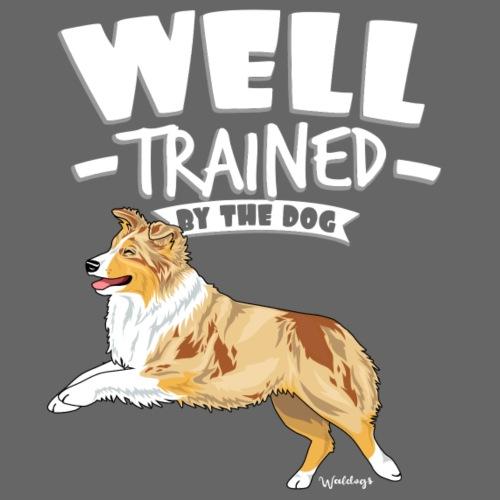 Australian Shepherd Well 9 - Miesten premium t-paita