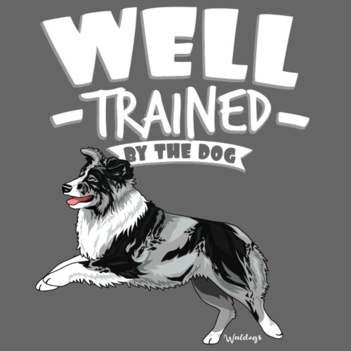 Australian Shepherd Well 11 - Miesten premium t-paita