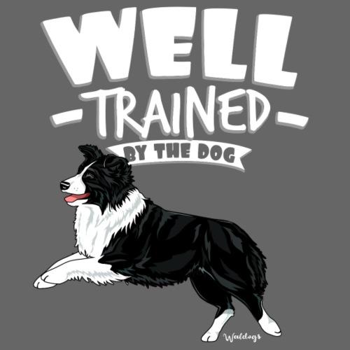 Australian Shepherd Well 12 - Miesten premium t-paita
