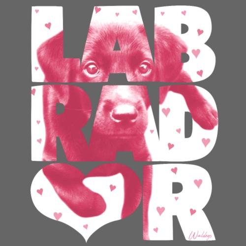 NASSU Labbis Pup - Miesten premium t-paita
