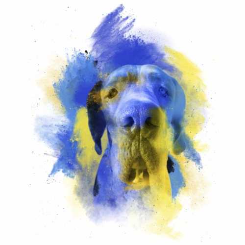 Gran Danes Tierra Azul - Camiseta premium hombre