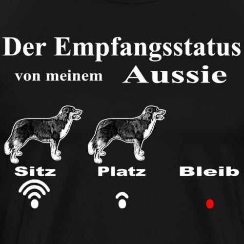 WLAN Aussie1 - Männer Premium T-Shirt