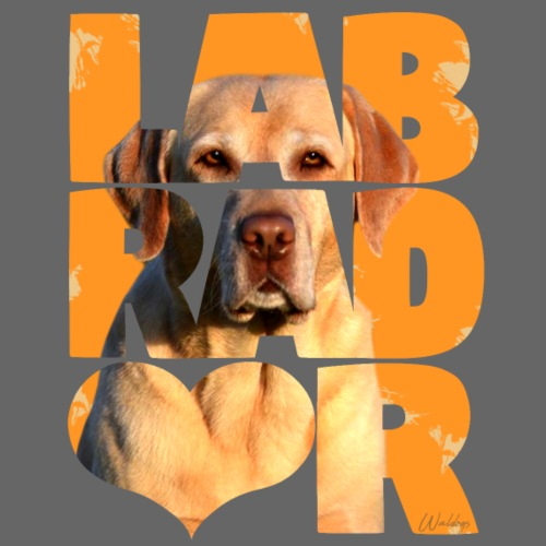 NASSU Labbis Yellow I - Miesten premium t-paita