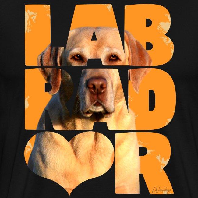 NASSU Labbis Yellow I