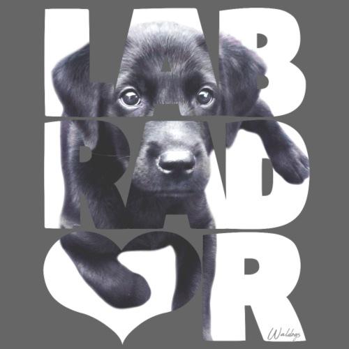 NASSU Labbis Pup IV - Miesten premium t-paita