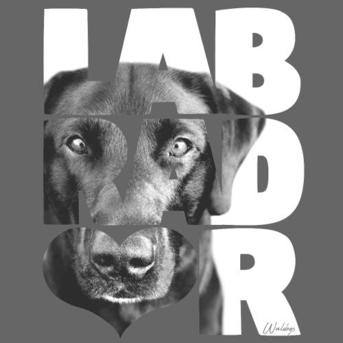 NASSU Labrador IV - Miesten premium t-paita