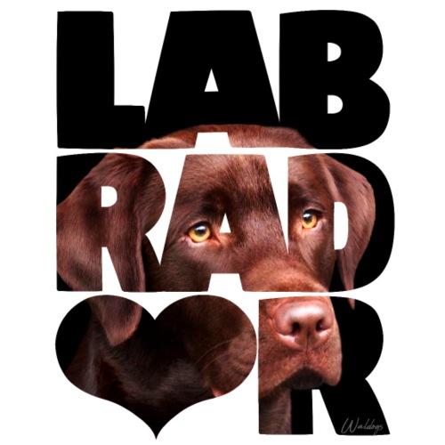 NASSU Labrador Brown IV - Miesten premium t-paita