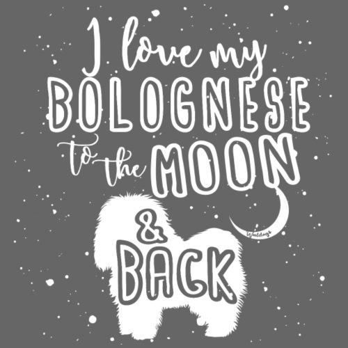 Bolognese Moon - Miesten premium t-paita