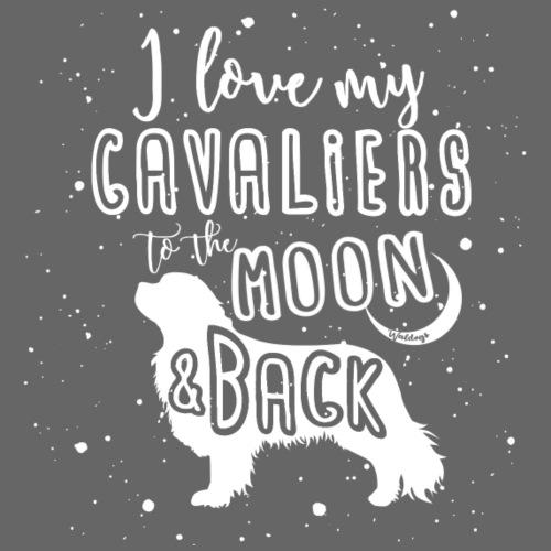 Cavalier Moon 2 - Miesten premium t-paita