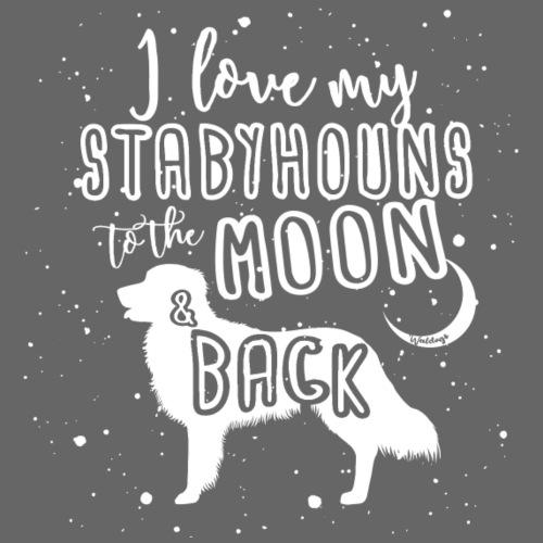 Stabyhoun Moon - Miesten premium t-paita