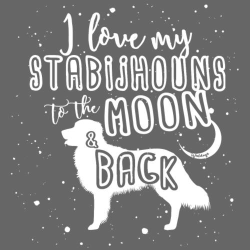 Stabijhoun Moon 2 - Miesten premium t-paita