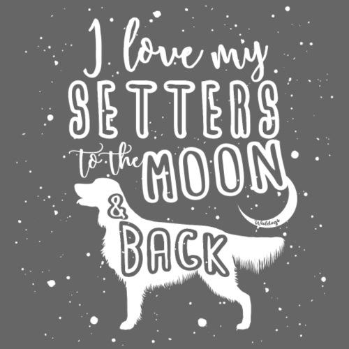 Irish Setter Moon - Miesten premium t-paita