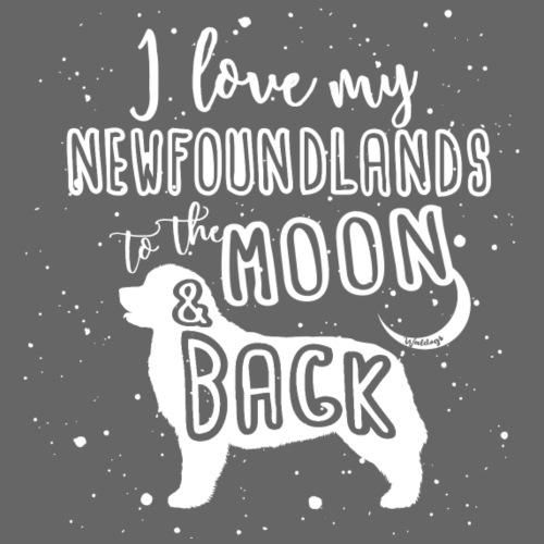Newfoundland Moon 01 - Miesten premium t-paita