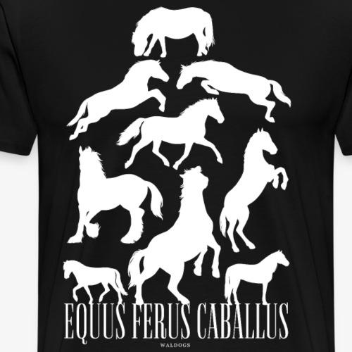 Equus Ferus Caballus - Miesten premium t-paita