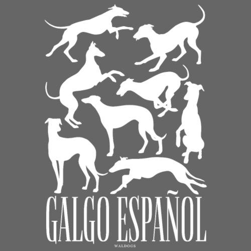 Galgo Espan ol - Miesten premium t-paita