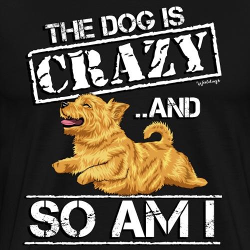Norwich Terrier Crazy 2 - Men's Premium T-Shirt