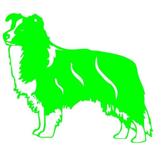 collie - www.dog-power.nl - Mannen Premium T-shirt