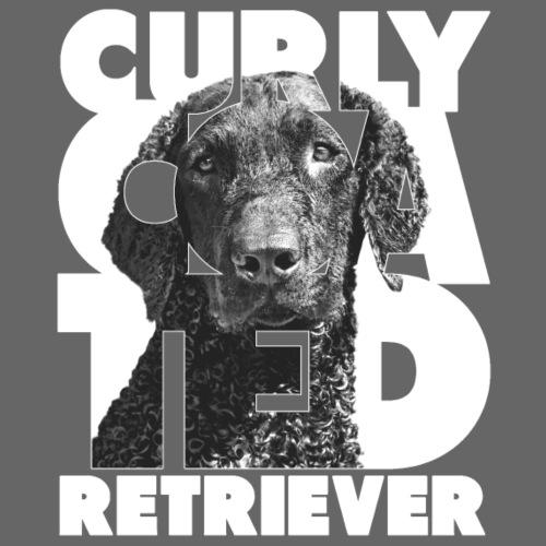 Curly Coated Retriever I - Miesten premium t-paita