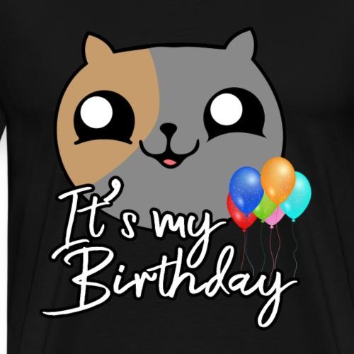 It`s My Birthday Katze