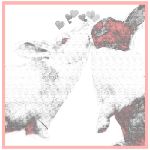 Bunnies kisses - Men's Premium T-Shirt