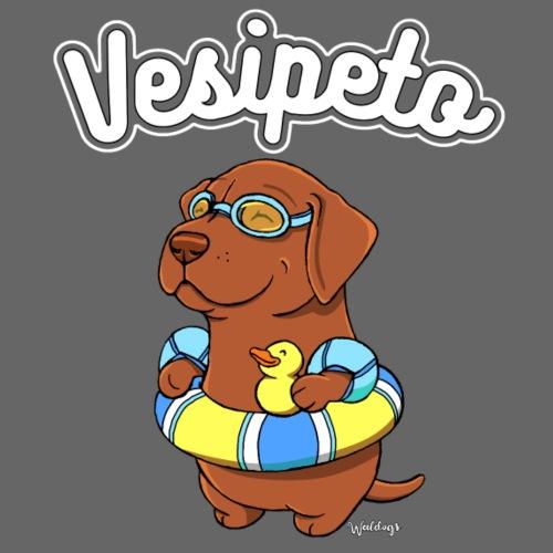 vesipeto3 - Miesten premium t-paita