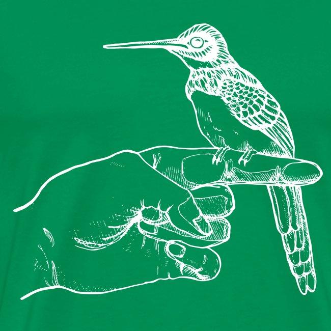 Kolibri auf der Hand