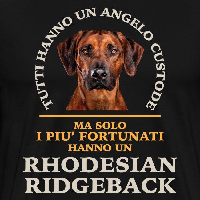 Rhodesian Ridgeback Colori