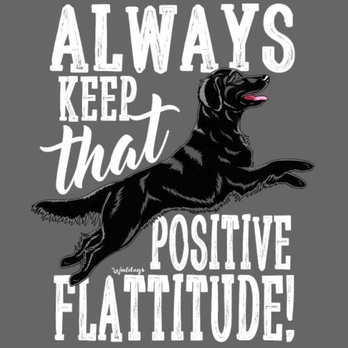 Flatti Always Positive B - Miesten premium t-paita