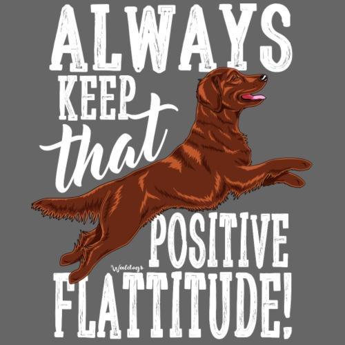 Flatti Always Positive - Miesten premium t-paita