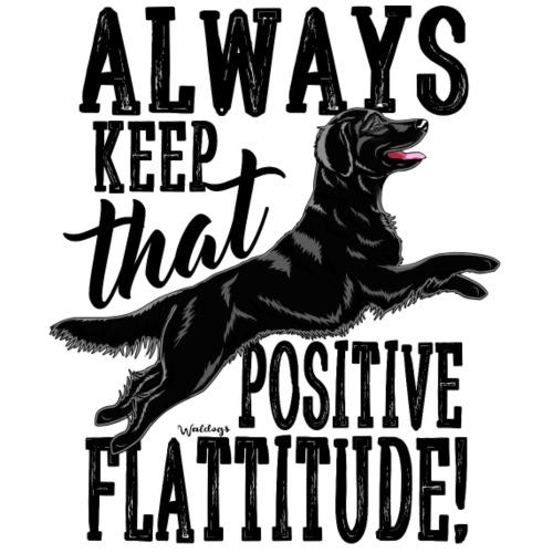 Flatti Always Positive B2 - Miesten premium t-paita