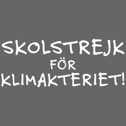 Skolstrejk för klimakteriet - Premium-T-shirt herr