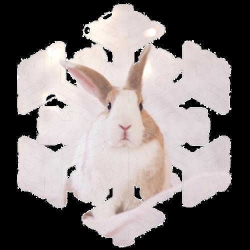 Snowflake and rabbit - Men's Premium T-Shirt