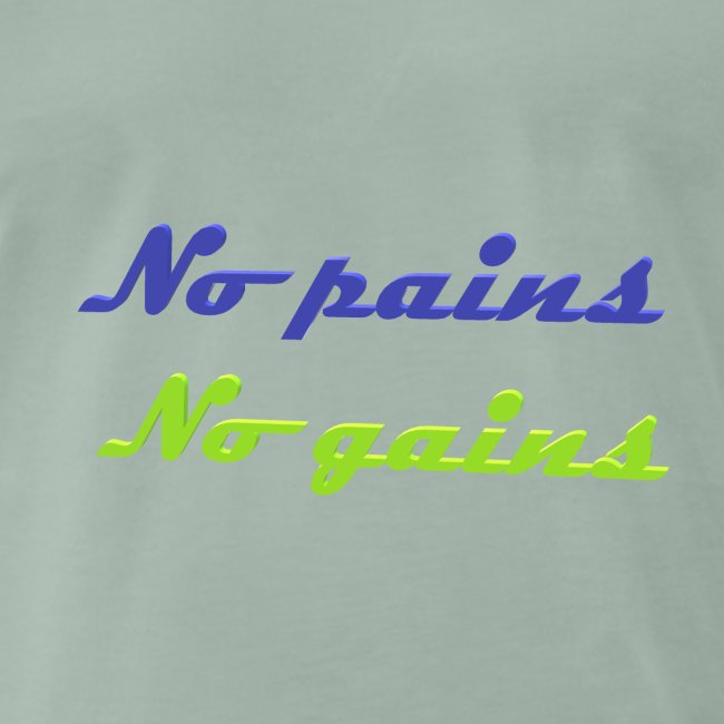 No pains no gains Saying with 3D effect