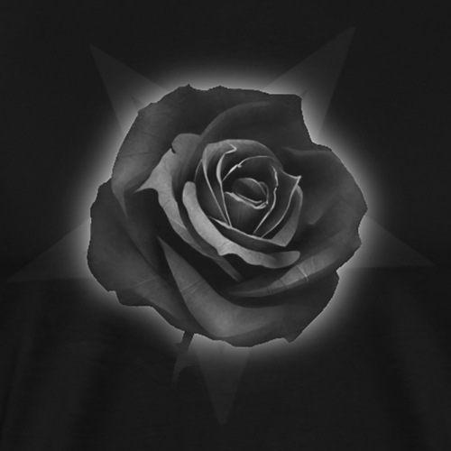 Black Rose for the Beauty - T-shirt Premium Homme