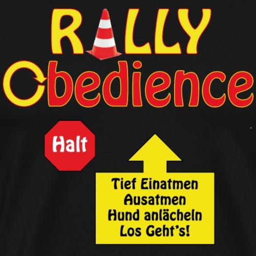 HVA & RallyO_pylon Halt A - Männer Premium T-Shirt