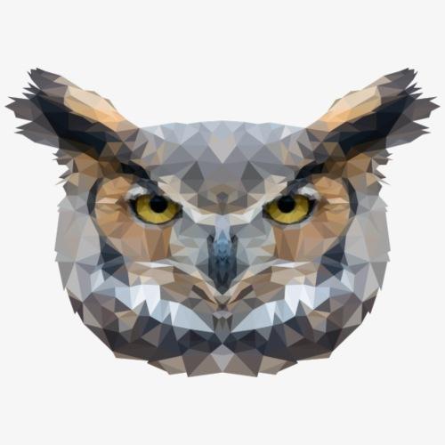 Polygon Owl - Koszulka męska Premium
