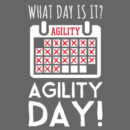 Agility Day - Miesten premium t-paita