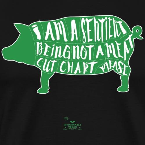 Sentient Being - Green - Premium-T-shirt herr