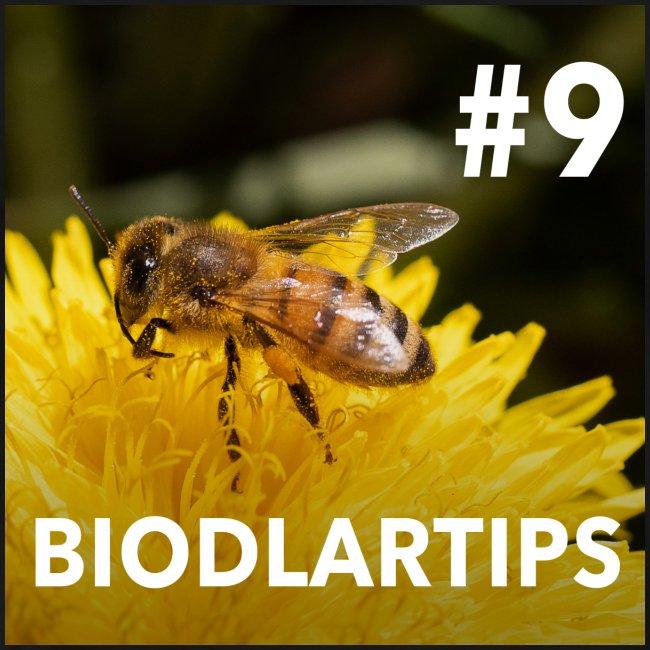 Biodlartips No #9