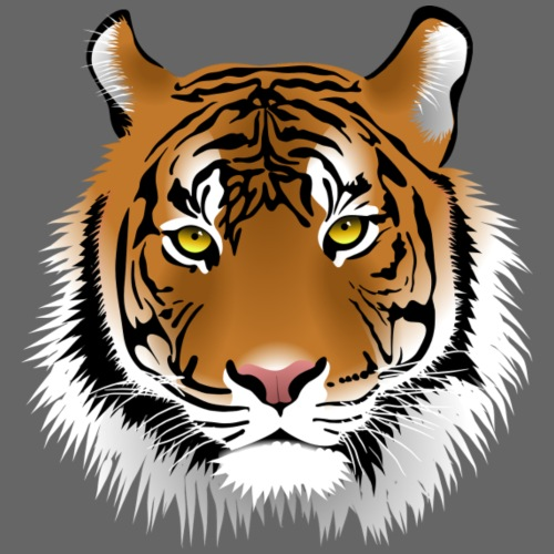 tiger numero 1 - Camiseta premium hombre