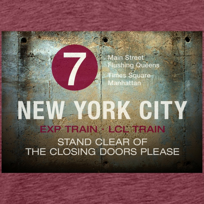 NYC subway stand clear of the closing doors please